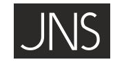 JNS-Logo