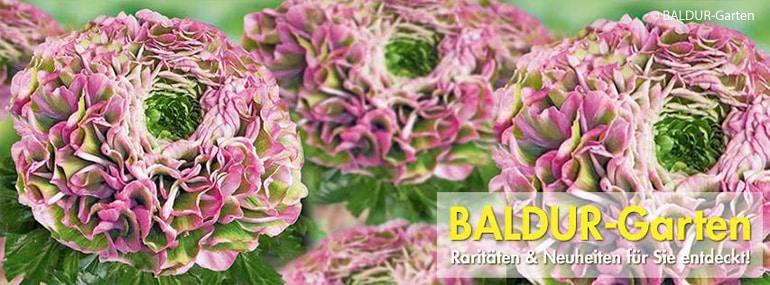 Baldur Garten Gutscheine 4 50 Einlösbar Im Mai 2019