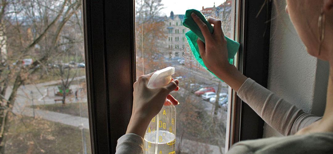 DIY-Reiniger im Test