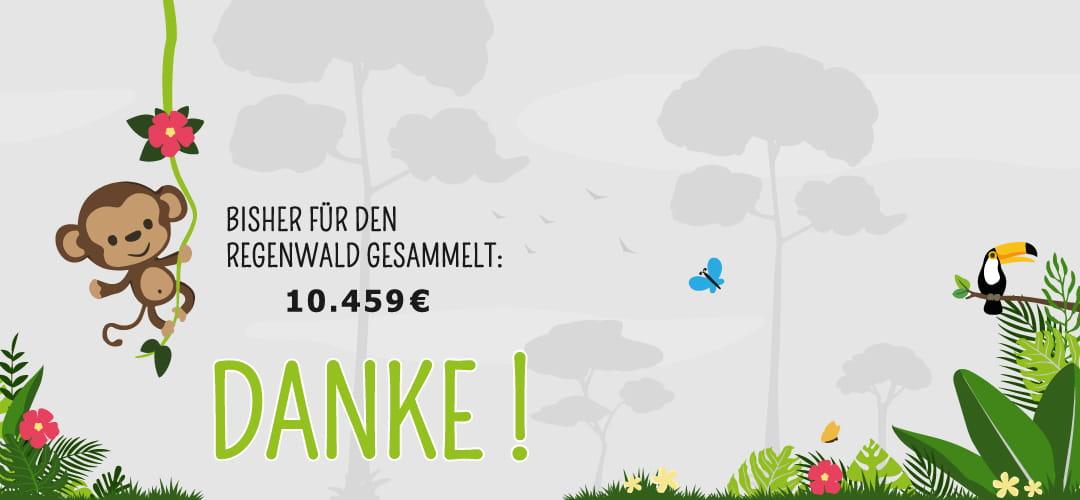 Unterstützung für die Rettung und Erhaltung des Regenwaldes dank Gutscheinnutzung